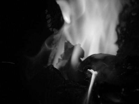 Fire Four Ida Musemic