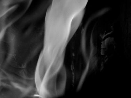 Fire Seven Ida Musemic